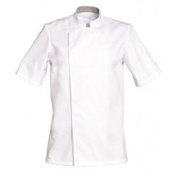 veste-cuisinier-blanc-manches-courtes-cook