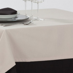 nappe-restaurant-repassage-facile-milano
